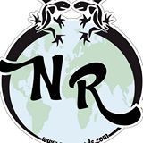 newsroads-logo
